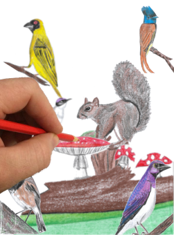 Picture of a hand holding a colouring in pencil on a page full of hand drawn art, link to Illustrative Art page, one of the Digital Services offered by encoreservices.co.za.