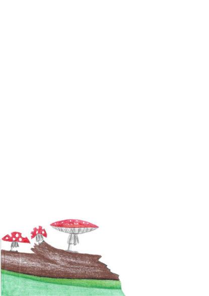 A4 Mushrooms