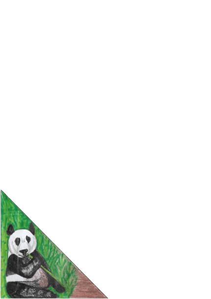 A4 Panda