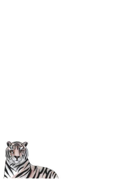 A4 Tiger