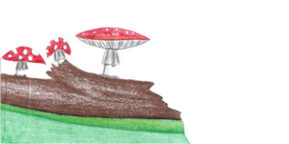 Envelope Mushrooms
