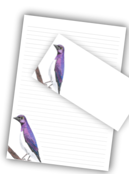 Picture of a printable stationery pack with a 32 line A4 page and a DL envelope with a Plum Colourd Starling. A good example of the Illustrative Art available form encoreservices.co.za