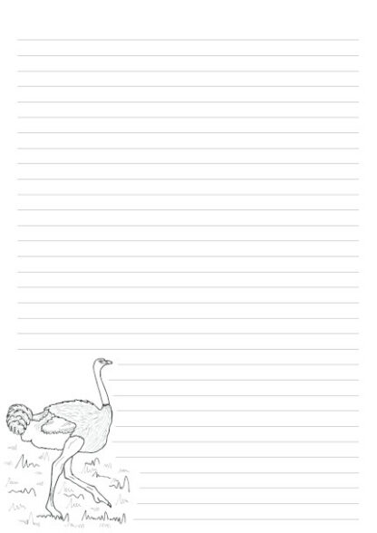 A4 page with 32 lines and a colouring in picture of an Ostrich iin the bottom left of the page.