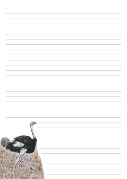 A4 page with 32 lines and a colour picture of an Ostrich iin the bottom left of the page.