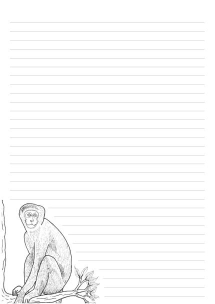 32 Lines Vervet Monkey