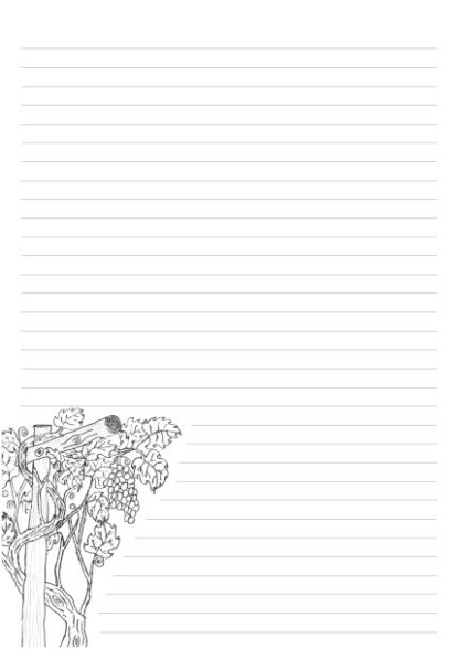 Picture of hand drawn grape vine as a colouring in picture on a A4 page with 32 lines for writing.