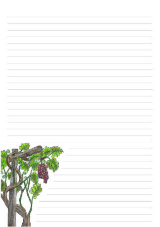 Picture of hand drawn grape vine on a A4 page with 32 lines for writing.