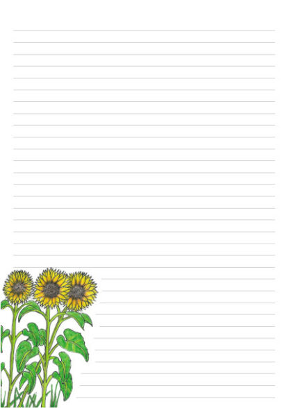 Hand drawn sunflowers on a 32 line A4 page for letter writing.