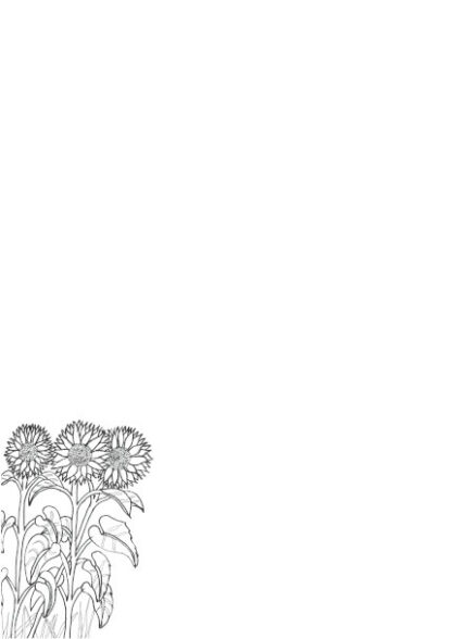 Hand drawn sunflowers as a colouring in picture on an A4 page for printing.
